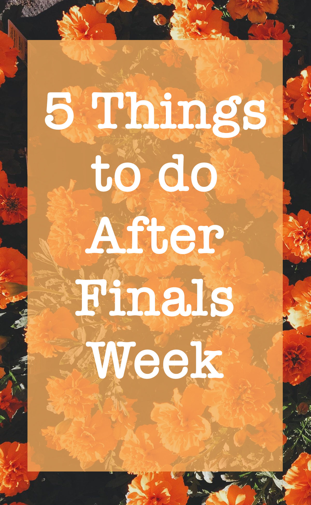 5 Thing To Do After Finals Week